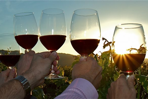 wine-image5