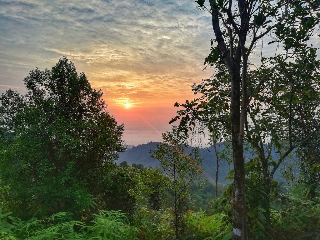 Experience marvelous sunrise when you hike up to Panorama Hill in the historical place of Sungai Lembing.