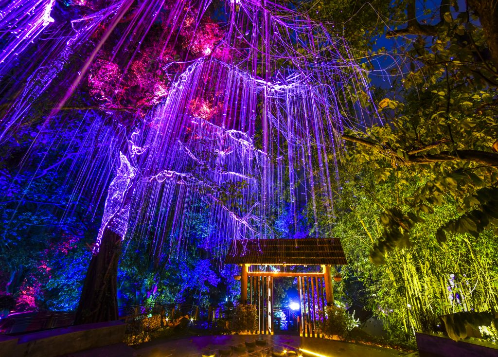 Be in an Avatar fantasy land with the Penang Secret Garden, perfect for family and friends. (image via David ST Loh )